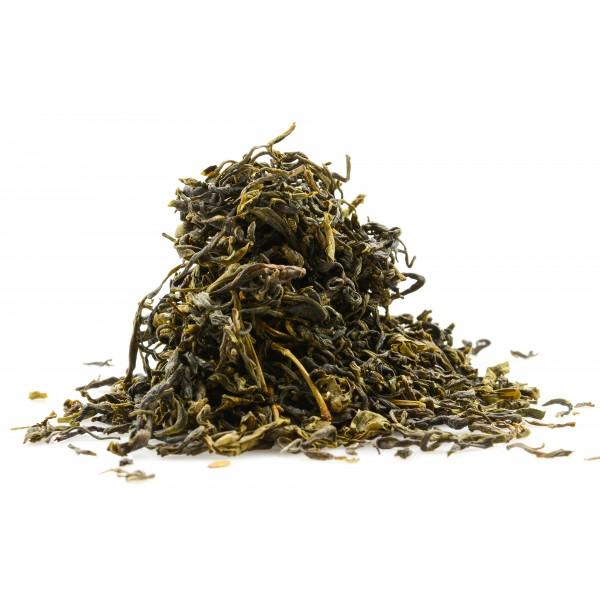 Wild Green Tea ORGANIC