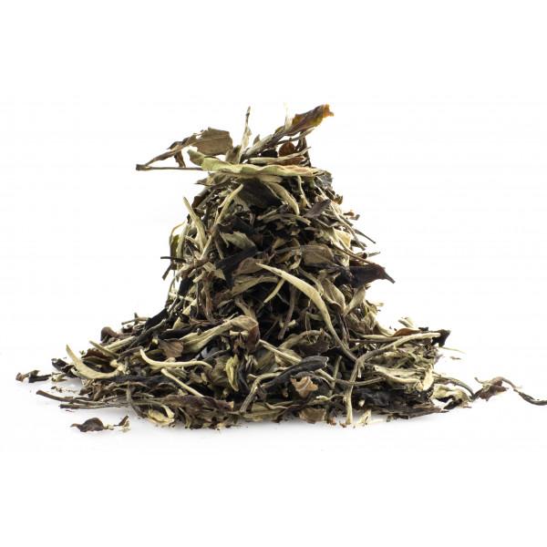 Wild White Tea